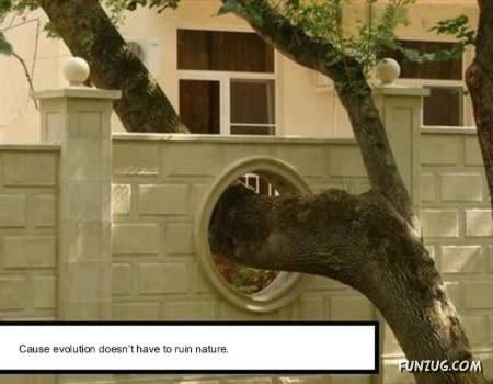Hilariously Clever Engineering Solutions