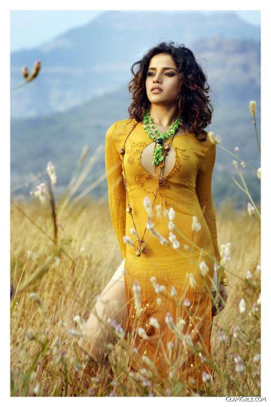 Indian Actress Piaa Bajpai